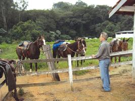 Sérgio Castanheira mantém relações de amizade e de trabalho com Roberto Lopes - Coleção Sérgio Castanheira de Souza